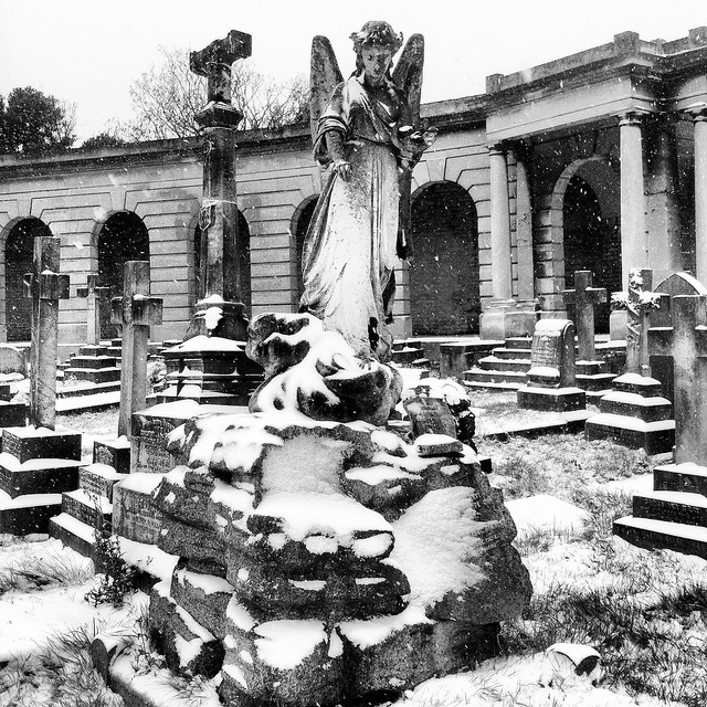 Doctor Who really has ruined these statues for us. Brompton Cemetery by Flamenco Sun
