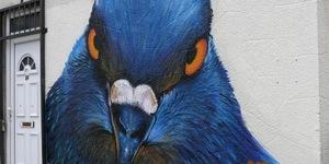 Pigeon Fancier Street Art Lands In Hackney