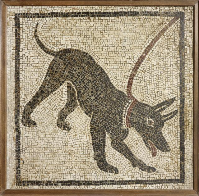 Mosaic of a guard dog. From the House of Orpheus (where the dog plaster cast was made), Pompeii, 1st century AD. Copyright Soprintendenza Speciale per i Beni Archeologici di Napoli e Pompei / Trustees of the British Museum
