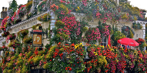 The best pubs in Notting Hill.