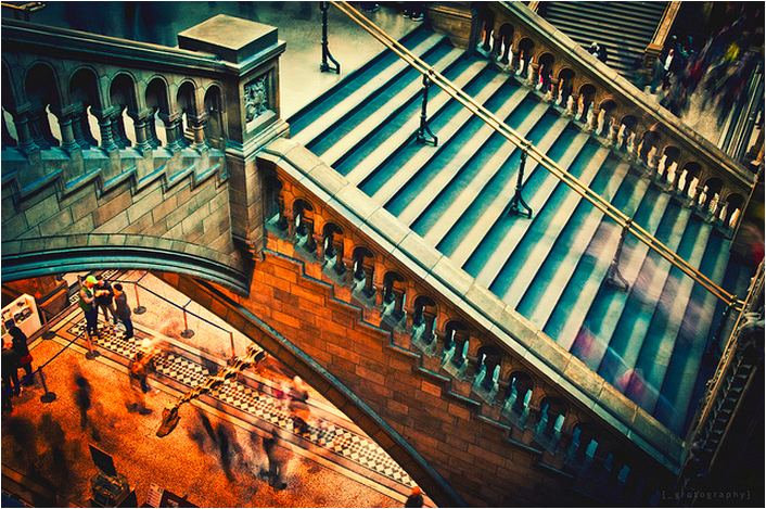 Natural History Museum by grotography