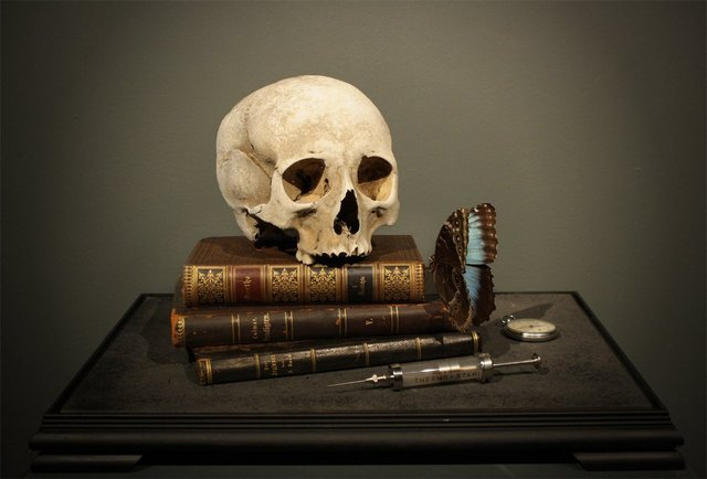 Dr.Viktor Schroeder : 'Memento Mori with 17th Century human skull', 2013. Copyright the artist, courtesy of Pertwee Anderson & Gold gallery, London.