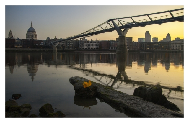 Dawn at St Paul's.. Looking from the south side of the river back towards St Paul's Cathedral & The City