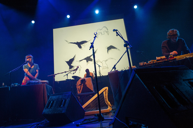 Woodpecker Wooliams playing at the Queen Elizabeth Hall.