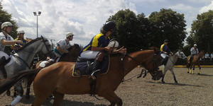 Cheer On The International Horseball Competition