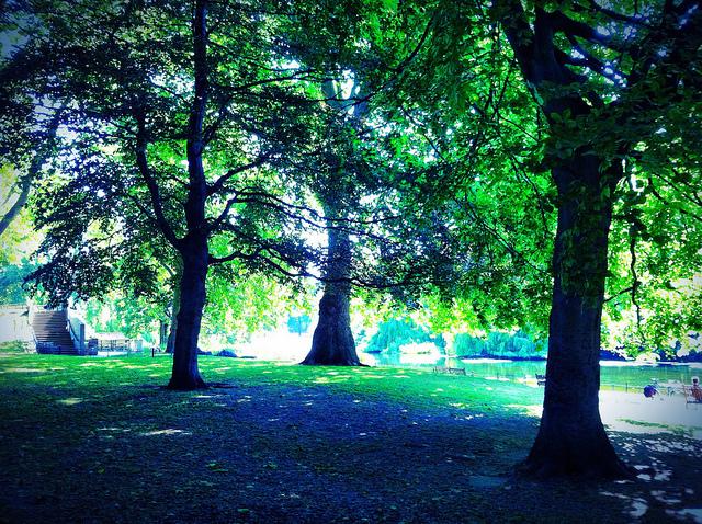 Park, between meetings by Andy Blackwell