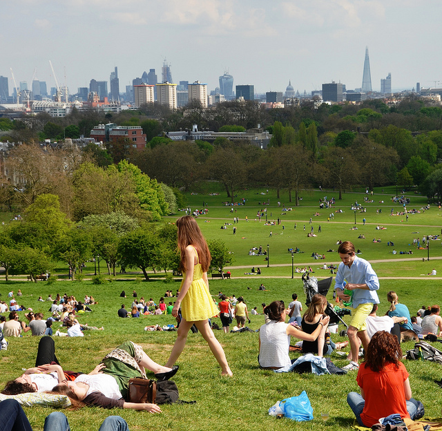 Primrose Hill by Duncan Harris