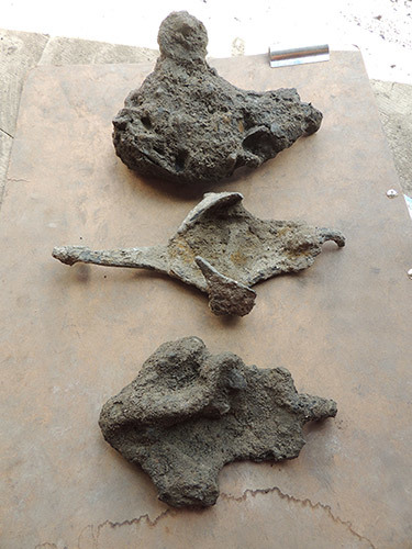 Roman horseshoes