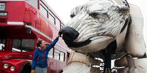 Walk With The World's Largest Polar Bear
