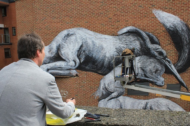 Dolan drawing ROA