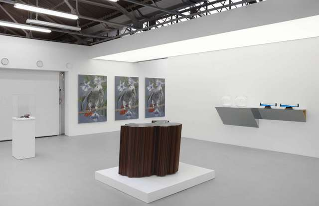 Island, Installation View. Image courtesy Dairy Arts Centre.