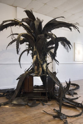 Douglas White, Crow's Stove Palm Tree. Image courtesy the artist and Dairy Art Centre