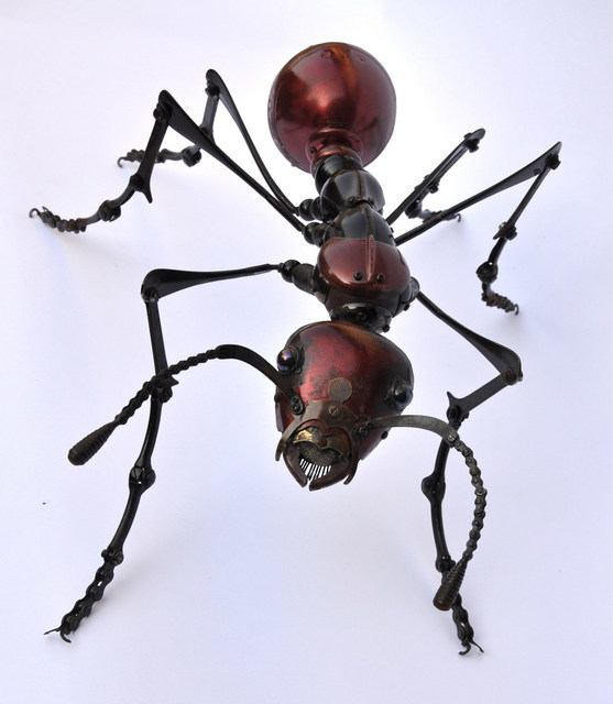Ant, Edouard Martinet. Image courtesy the artist and Sladmore Contemporary.