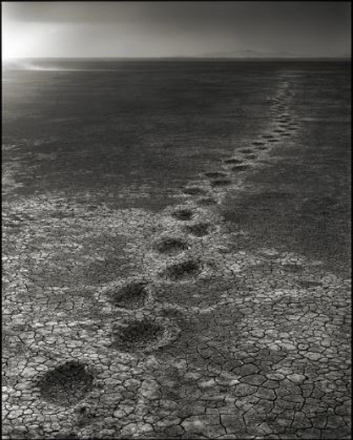Elephant Footprints (Nick Brandt)