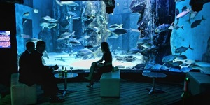 Deep Sea Soirée After Dark At London Aquarium