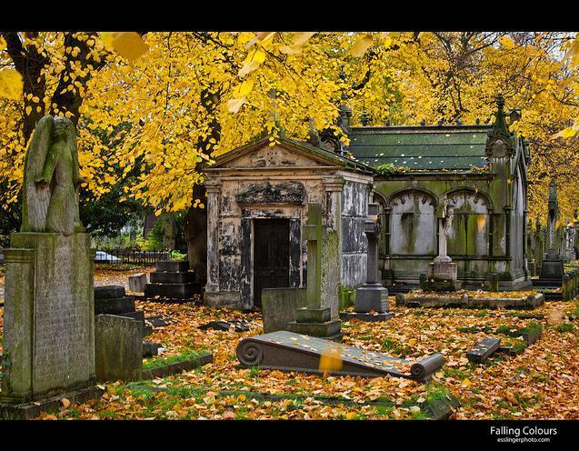 autumn_211113