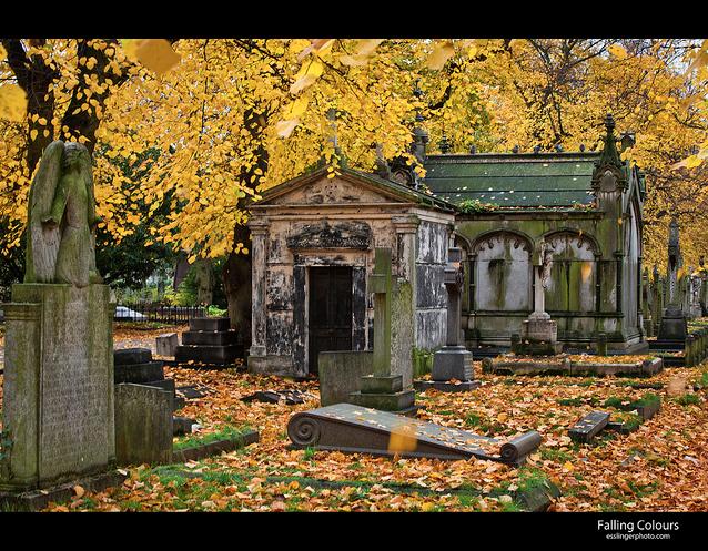Brompton Cemetery by John Esslinger