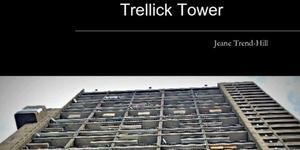 Santa's Lap: Trellick Tower Book And Calendar