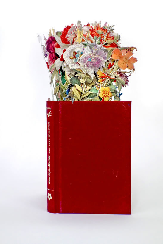 Jack Milroy, Book of Flowers 2. Image courtesy of Art First