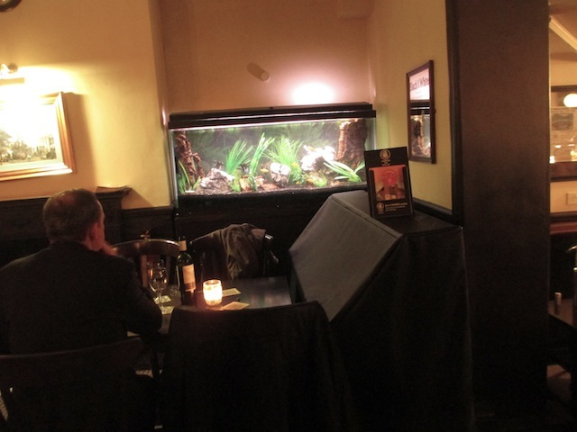 That fish tank, in all its glory.