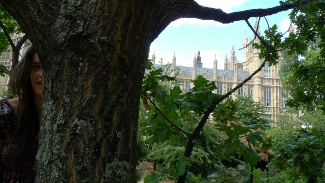 "Tree 57: Victoria Tower Gardens, Westminster. ""I would have liked to have climbed a tree in Parliament Square while the protest camp was still there but was stopped by the police. When asked whether they had any legal grounds to prevent me climbing, the PC provided a ticket that just said 'warned not to climb for own safety' rather than a straight answer. I was with Caroline Cousins, a 16 year old who had brought home-made cookies for the protestors. As it happens, the trees and statues in Parliament Square are in fact protected, though no-one's thought to tell anyone with the power to enforce it. So we ended up climbing an oak in Victoria Tower Gardens instead."""