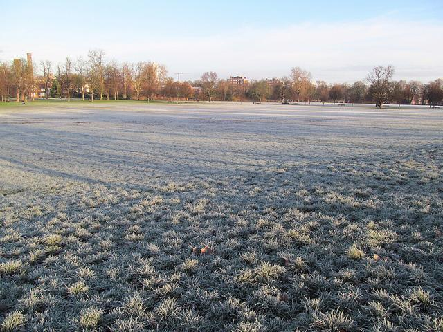 frost_120114