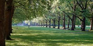 Romantic London: A Valentine's Walk
