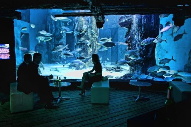 Aquarium East London