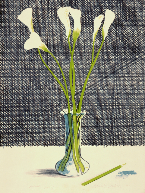 """LILLIES"" 1971 LITHOGRAPH; EDITION: 65 29 1/2 X 21"" © DAVID HOCKNEY"