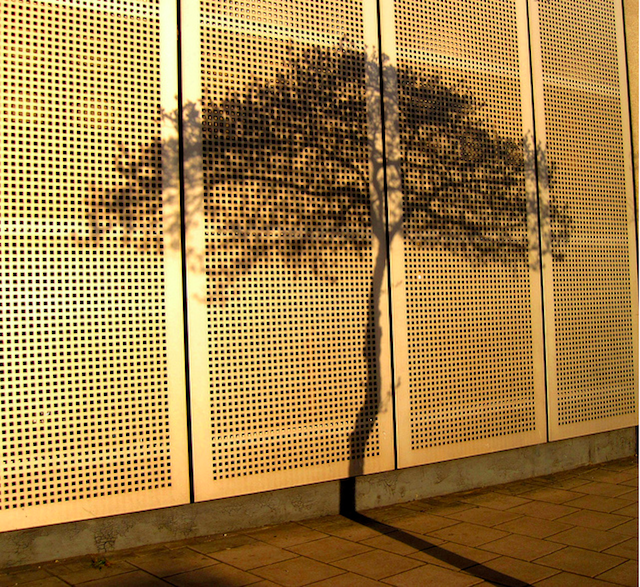 Tree shadow off Hammersmith Broadway by HoosierSands on Flickr