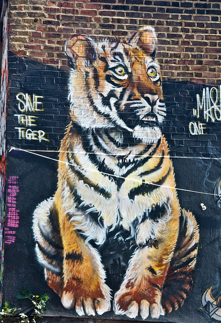 Save the tigers by Stephanie Sadler