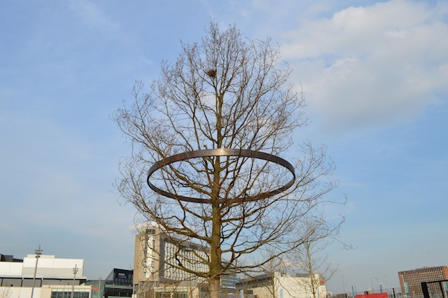 History Trees: look out for these circular sculptures, 10 of which can be found engirdling trees at entrances to the Park. Each contains an inscribed history of the area. Over time, the branches and ring will slowly fuse together.