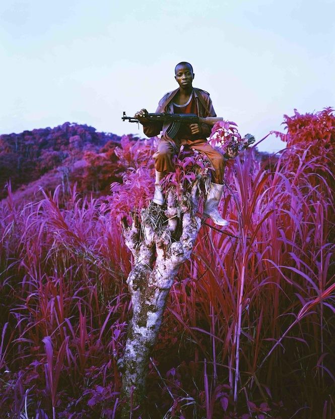 Richard Mosse, Higher Ground. Image courtesy the artist.