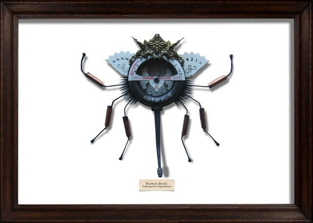 Mark Oliver, Porthole Beetle. Image courtesy and copyright of the artist.