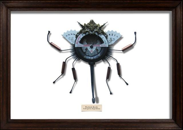 Mark Oliver, Porthole Beetle. Image courtesy and copyright of the artist.