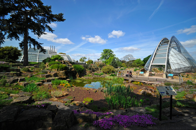 Alpine House in Kew Gardens looks a little bit like a bridge, photo by Chris Chong on Flickr