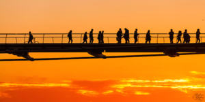 The Friday Photos: Silhouettes
