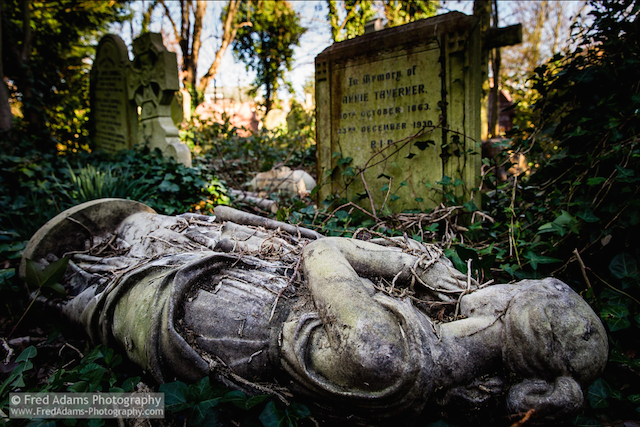 Abney Park Cemetery in Stoke Newington, by Fred Adams on Flickr