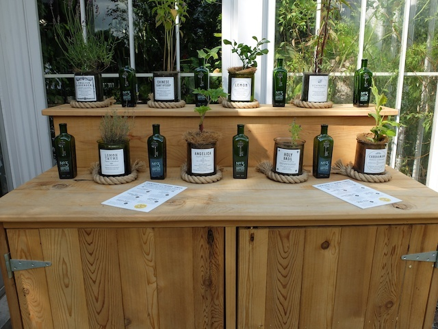 Botanicals in the Gin and Tonics Garden