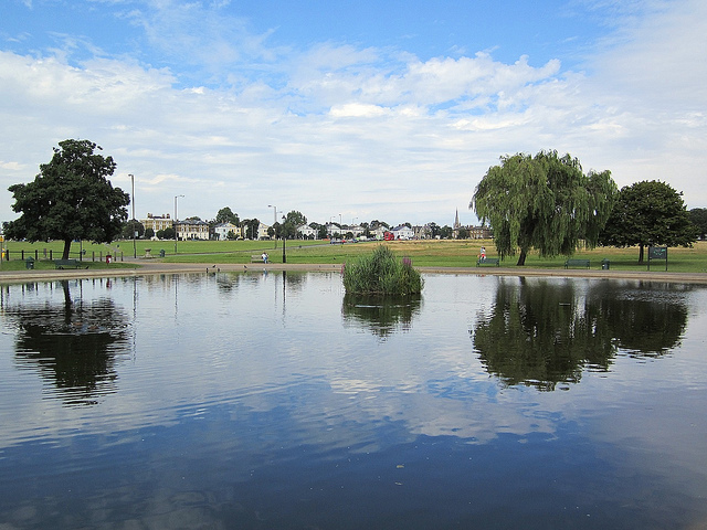 Prince of Wales pond in Blackheath, by Andy Worthington