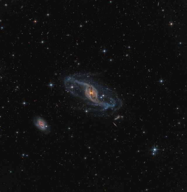 Robotic Scope Image of the Year, by Mark Hanson (USA) with NGC 3718.