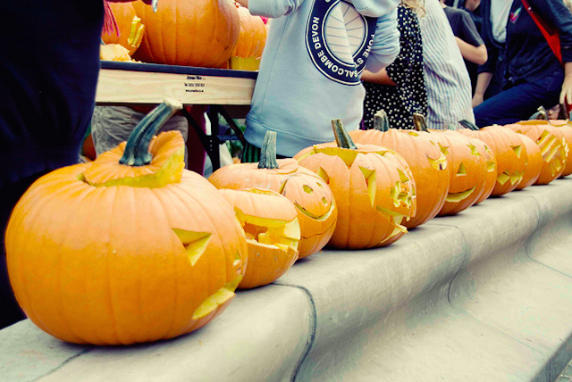 Pumpins along the South Bank, by Hanna Klosowska Photography