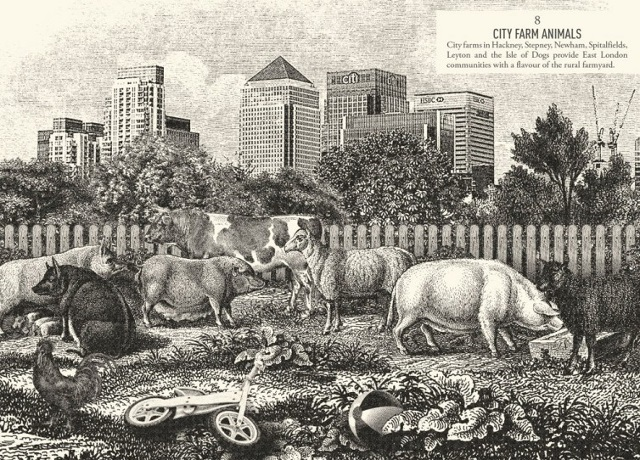 City Farm Animals. Image Ian McDonnell Hox