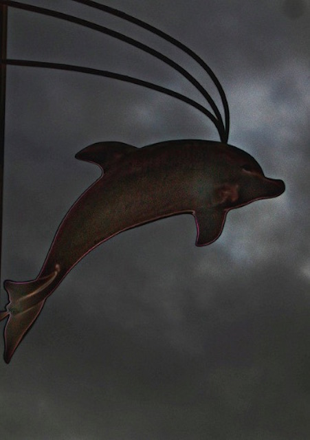 Holborn Dolphin. Photo: Dave McGowan