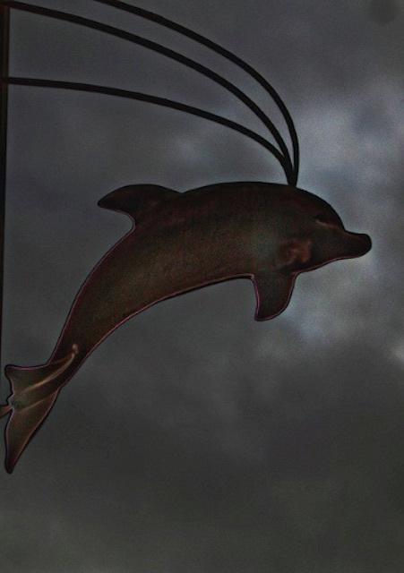 Holborn Dolphin. Photo: Dave McGowan