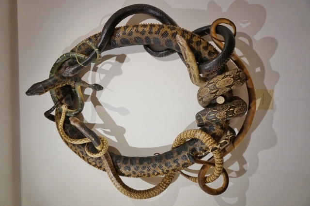 If you have a fear of snakes, then welcome to your worst nightmare. A wreath made up an anaconda, a cobra, a python and a black mamba. Image courtesy of the artist and Shapero Modern