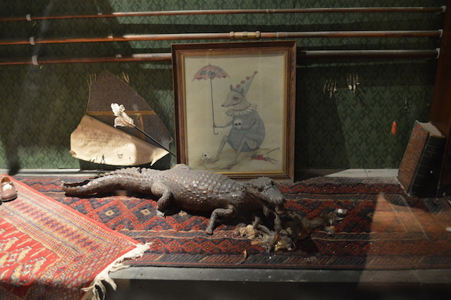 A cabinet of curiosities, containing almost one curiosity, which is this sorry looking crocodilian.