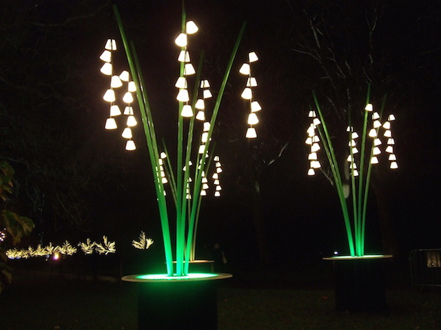 Nature Lights Up Christmas At Kew Gardens Londonist