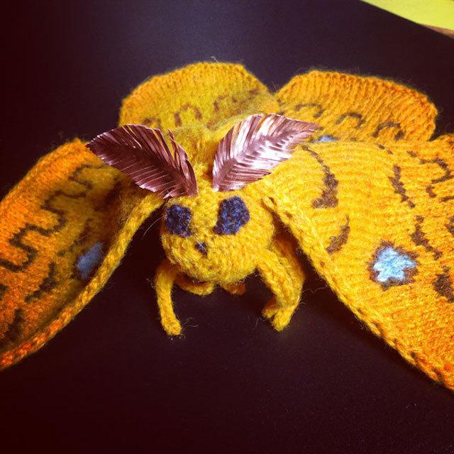moth-wool-shop2.jpg