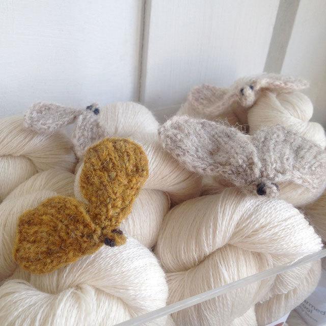 moths-in-wool.jpg